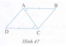 Bài tập 20 trang  154 Tài liệu dạy – học Toán 7 tập 1