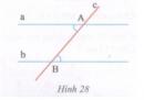 Bài tập 24 trang  130 Tài liệu dạy – học Toán 7 tập 1