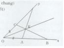 Bài tập 26 trang  155 Tài liệu dạy – học Toán 7 tập 1