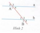Bài tập 4 trang  133 Tài liệu dạy – học Toán 7 tập 1