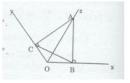Bài 6 trang  169 Tài liệu dạy – học Toán 7 tập 1