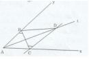 Bài tập 8 trang  156 Tài liệu dạy – học Toán 7 tập 1