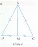 Hoạt động 2 trang  161 Tài liệu dạy – học Toán 7 tập 1