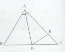 Bài tập 5 trang 96 Tài liệu dạy – học Toán 7 tập 2
