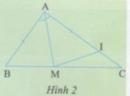 Hoạt động 3 trang 84 Tài liệu dạy – học Toán 7 tập 2