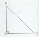 Bài tập 14 trang 96 Tài liệu dạy – học Toán 7 tập 2