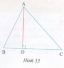 Hoạt động 18 trang 116 Tài liệu dạy – học Toán 7 tập 2