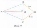 Bài tập 20 trang 122 Tài liệu dạy – học Toán 7 tập 2
