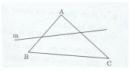 Bài 4 trang 102 Tài liệu dạy – học toán 6 tập 2