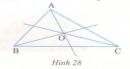 Bài 5 trang 102 Tài liệu dạy – học toán 6 tập 2