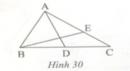 Bài 8 trang 103 Tài liệu dạy – học toán 6 tập 2