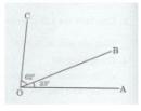 Bài 1 trang 110 Tài liệu dạy – học toán 6 tập 2