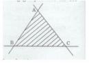 Bài 11 trang 103 Tài liệu dạy – học toán 6 tập 2