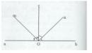 Bài 12 trang 118 Tài liệu dạy – học toán 6 tập 2
