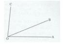 Bài 3 trang 110 Tài liệu dạy – học toán 6 tập 2