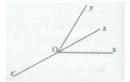 Bài 6 trang 118 Tài liệu dạy – học toán 6 tập 2