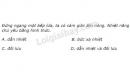 Bài 4 trang 160 sách Tài liệu Dạy – Học Vật lí 8