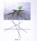 Bài 13 trang 161 Tài liệu dạy – học toán 6 tập 1