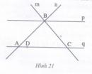 Bài 3 trang 160 Tài liệu dạy – học toán 6 tập 1