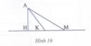 Bài 5 trang 176 Tài liệu dạy – học toán 6 tập 1
