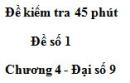 Đề kiểm tra 45 phút (1 tiết) - Đề số 1 - Chương 4 - Đại số 9