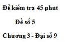 Đề kiểm tra 45 phút (1 tiết) - Đề số 5 - Chương 3 - Đại số 9