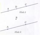Hoạt động 8  trang 155 Tài liệu dạy – học toán 6 tập 1