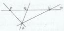 Bài 3 trang 163 Tài liệu dạy – học toán 6 tập 1