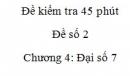Đề kiểm tra 45 phút (1 tiết) - Đề số 2 - Chương  4 – Đại số 7