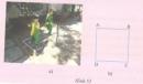 Hoạt động 28 trang 128 Tài liệu dạy – học Toán 8 tập 1