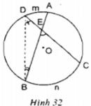 Trả lời câu hỏi Bài 5 trang 81 Toán 9 Tập 2