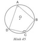 Trả lời câu hỏi  Bài 7 trang 88 Toán 9 Tập 2