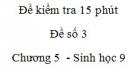 Đề kiểm tra 15 phút - Đề số 3 - Chương 5 - Sinh học 9