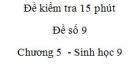 Đề kiểm tra 15 phút - Đề số 9 - Chương 5 - Sinh học 9