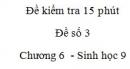 Đề kiểm tra 15 phút - Đề số 3 - Chương 6 - Sinh học 9