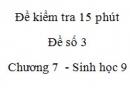 Đề kiểm tra 15 phút - Đề số 3 - Chương 7 - Sinh học 9