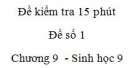 Đề kiểm tra 15 phút - Đề số 1 - Chương 9 - Sinh học 9