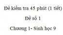 Đề kiểm tra 45 phút (1 tiết) - Đề số 1 - Chương 1- Sinh học 9