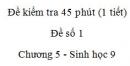 Đề kiểm tra 45 phút (1 tiết) - Đề số 1 - Chương 5 - Sinh học 9