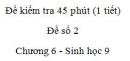 Đề kiểm tra 45 phút (1 tiết) - Đề số 2 - Chương 6 - Sinh học 9