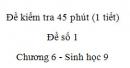 Đề kiểm tra 45 phút (1 tiết) - Đề số 1 - Chương 6 - Sinh học 9