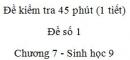 Đề kiểm tra 45 phút (1 tiết) - Đề số 1 - Chương 7 - Sinh học 9