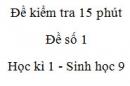 Đề kiểm tra 15 phút - Đề số 1 - Học kì 1 - Sinh học 9
