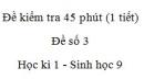Đề kiểm tra 45 phút (1 tiết) - Đề số 3 - Học kì 1 - Sinh học 9