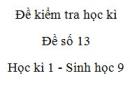 Đề số 13 - Đề kiểm tra học kì 1 - Sinh học 9