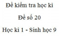 Đề số 20 - Đề kiểm tra học kì 1 - Sinh học 9