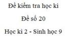 Đề số 20 - Đề kiểm tra học kì 2 - Sinh học 9