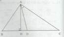 Bài tập 12 trang 69 Tài liệu dạy – học Toán 8 tập 2