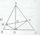Bài tập 23 trang 92 Tài liệu dạy – học Toán 8 tập 2