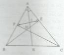 Bài tập 24 trang 92 Tài liệu dạy – học Toán 8 tập 2